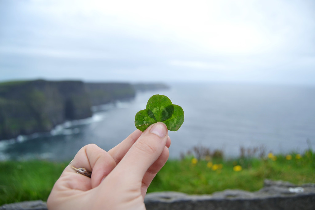 cliffs-of-moher-and-clover